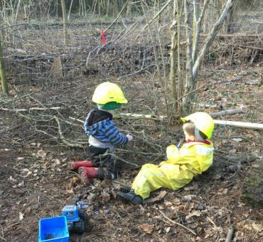 Forest School Multi-Week Programme