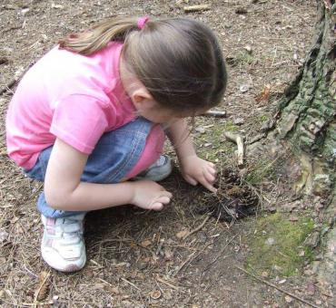 Junior Forest School